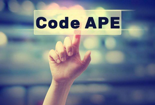 Une entreprise fait évoluer ses activités. Doit-elle changer son code d'activité principale exercée (APE) ?